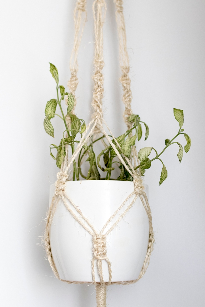 DIY Macrame plant hanger | video tutorial