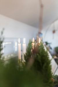 CHRISTMAS | CHRISTMAS TABLE | TABLE STYLING | FAMILY DINNER