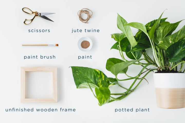 diy-hanging-planter-materials_lowercase